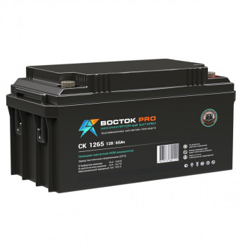 Аккумуляторная батарея ВОСТОК СК-1265